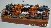 【Kiddy Kiddo 親子桌遊】諾亞方舟Noah's Ark〜訓練空間重量平衡觀念,在一起玩的過:DSC08740.jpg