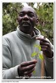 非洲肯亞2010/8:17IMG_4806.jpg