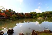 在大阪的第一天生活:日本大阪自由行第一天023.jpg