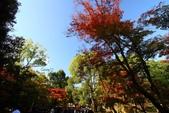 在大阪的第一天生活:日本大阪自由行第一天009.jpg