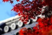 在大阪的第一天生活:日本大阪自由行第一天111.jpg