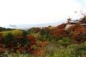 在大阪的第五天生活:日本大阪自由行第五天023.jpg
