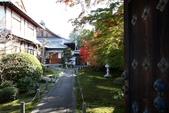 在大阪的第三天生活:日本大阪自由行第三天003.jpg
