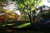 在大阪的第一天生活:日本大阪自由行第一天047.jpg