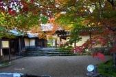 在大阪的第一天生活:日本大阪自由行第一天051.jpg