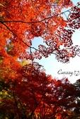 在大阪的第三天生活:日本大阪自由行第三天012.jpg