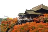 在大阪的第五天生活:日本大阪自由行第五天021.jpg
