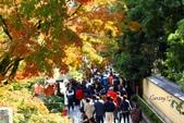 在大阪的第一天生活:日本大阪自由行第一天145.jpg