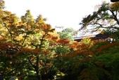 在大阪的第三天生活:日本大阪自由行第三天009.jpg