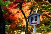 在大阪的第一天生活:日本大阪自由行第一天104.jpg