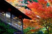 在大阪的第一天生活:日本大阪自由行第一天171.jpg