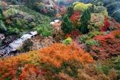 在大阪的第五天生活:日本大阪自由行第五天012.jpg