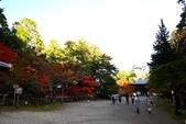 在大阪的第一天生活:日本大阪自由行第一天071.jpg