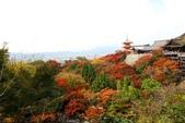 在大阪的第五天生活:日本大阪自由行第五天024.jpg