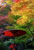在大阪的第一天生活:日本大阪自由行第一天167.jpg