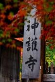 在大阪的第一天生活:日本大阪自由行第一天179.jpg