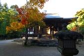 在大阪的第一天生活:日本大阪自由行第一天069.jpg