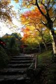 在大阪的第一天生活:日本大阪自由行第一天042.jpg