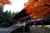在大阪的第一天生活:日本大阪自由行第一天063.jpg