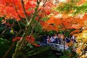 在大阪的第三天生活:日本大阪自由行第三天014.jpg