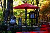 在大阪的第一天生活:日本大阪自由行第一天174.jpg