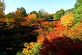在大阪的第三天生活:日本大阪自由行第三天039.jpg