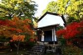 在大阪的第一天生活:日本大阪自由行第一天057.jpg