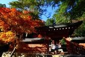 在大阪的第一天生活:日本大阪自由行第一天058.jpg