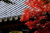 在大阪的第一天生活:日本大阪自由行第一天109.jpg