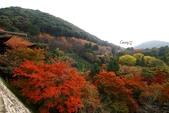 在大阪的第五天生活:日本大阪自由行第五天009.jpg