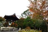 在大阪的第五天生活:日本大阪自由行第五天042.jpg
