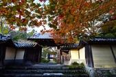 在大阪的第一天生活:日本大阪自由行第一天053.jpg