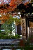 在大阪的第一天生活:日本大阪自由行第一天180.jpg