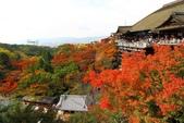 在大阪的第五天生活:日本大阪自由行第五天022.jpg