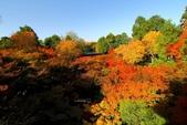 在大阪的第三天生活:日本大阪自由行第三天042.jpg