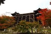 在大阪的第五天生活:日本大阪自由行第五天027.jpg