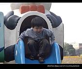 20081213大寮花海:nEO_IMG_IMGP3122.jpg