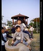 20081213大寮花海:nEO_IMG_IMGP3134.jpg