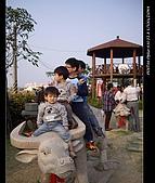 20081213大寮花海:nEO_IMG_IMGP3137.jpg