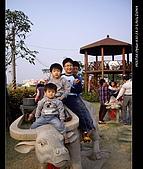 20081213大寮花海:nEO_IMG_IMGP3138.jpg