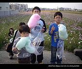 20081213大寮花海:nEO_IMG_IMGP3150.jpg