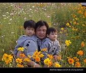 20081213大寮花海:nEO_IMG_IMGP3161.jpg