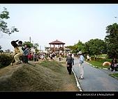20081213大寮花海:nEO_IMG_P1000076.jpg