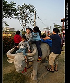 20081213大寮花海:nEO_IMG_P1000085.jpg