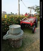 20081213大寮花海:nEO_IMG_P1000092.jpg