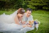WEDDING:10385487_970565012983600_7136177567576650765_n.jpg