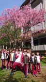 2018.3.22 校園櫻花開:dsc_7224_39138819910_o.jpg