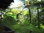 巴里島七日自由行:IMG_0129.JPG