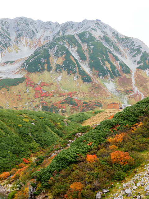 立山-4-室堂平 (114).jpg - 富山県。立山黑部