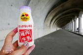 """北海道道北。""""日本最北""""們:日本最北車站-JR稚內車站 (30).JPG"""